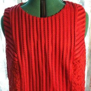 SPENSER JEREMY MESH AND LACE SHIFT DRESS Size2x